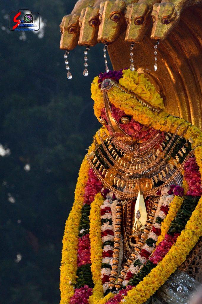 நல்லூர் கந்தசுவாமி ஆலய 14 ம் நாள் உற்சவம் 9