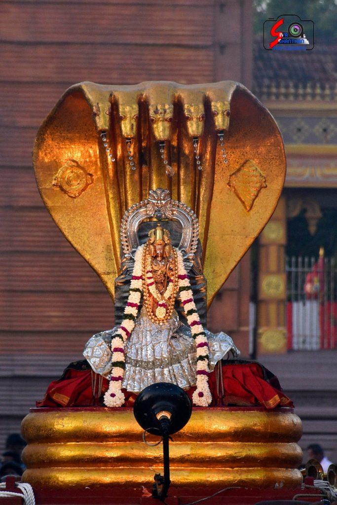 நல்லூர் கந்தசுவாமி ஆலய 14 ம் நாள் உற்சவம் 11