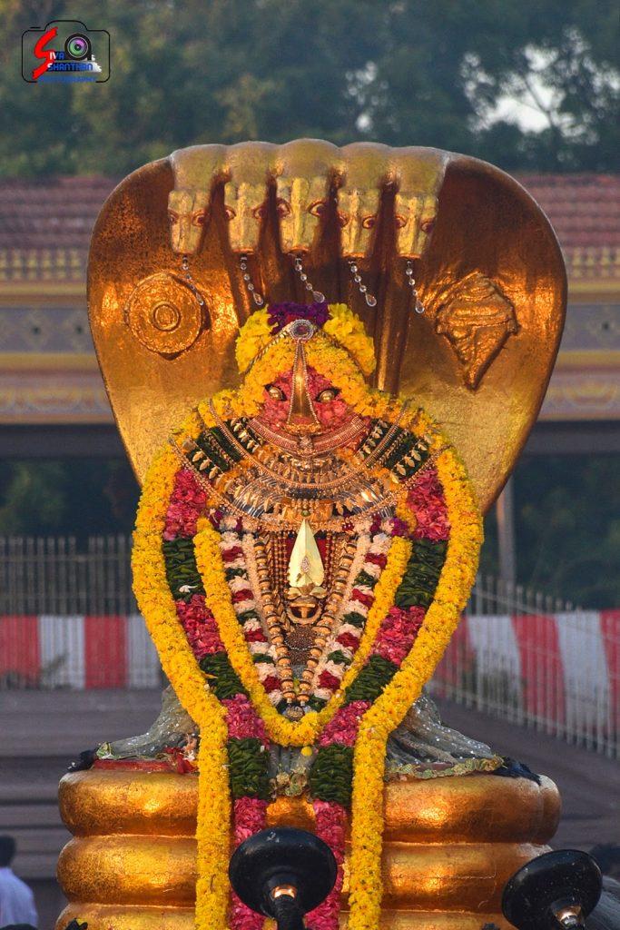 நல்லூர் கந்தசுவாமி ஆலய 14 ம் நாள் உற்சவம் 13