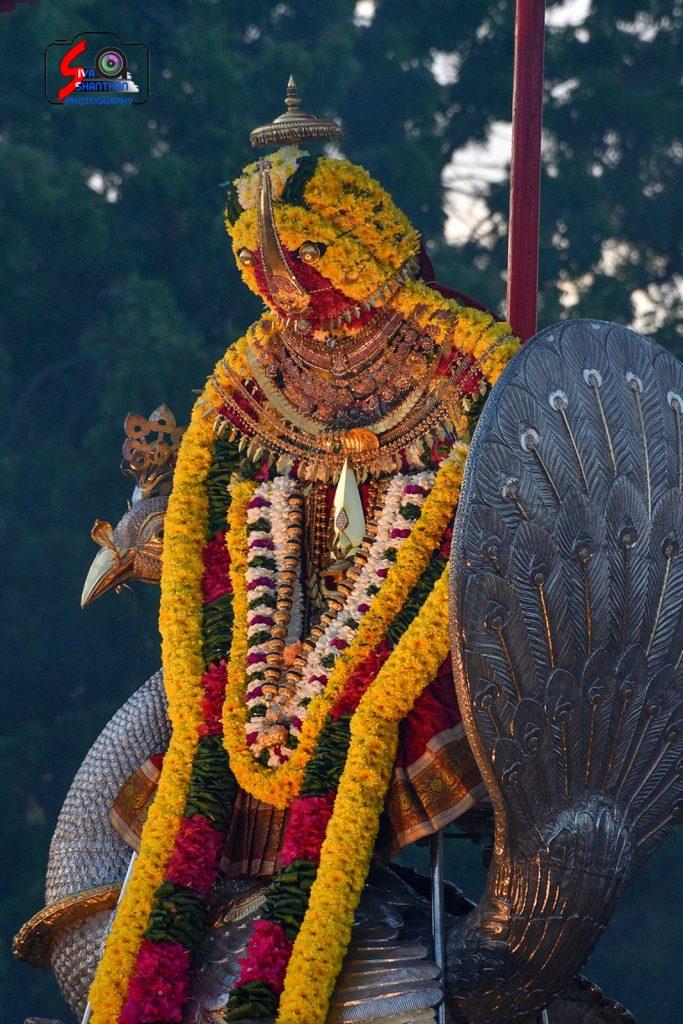 நல்லூர் கந்தசுவாமி ஆலய 19 ம் நாள் உற்சவம் 5