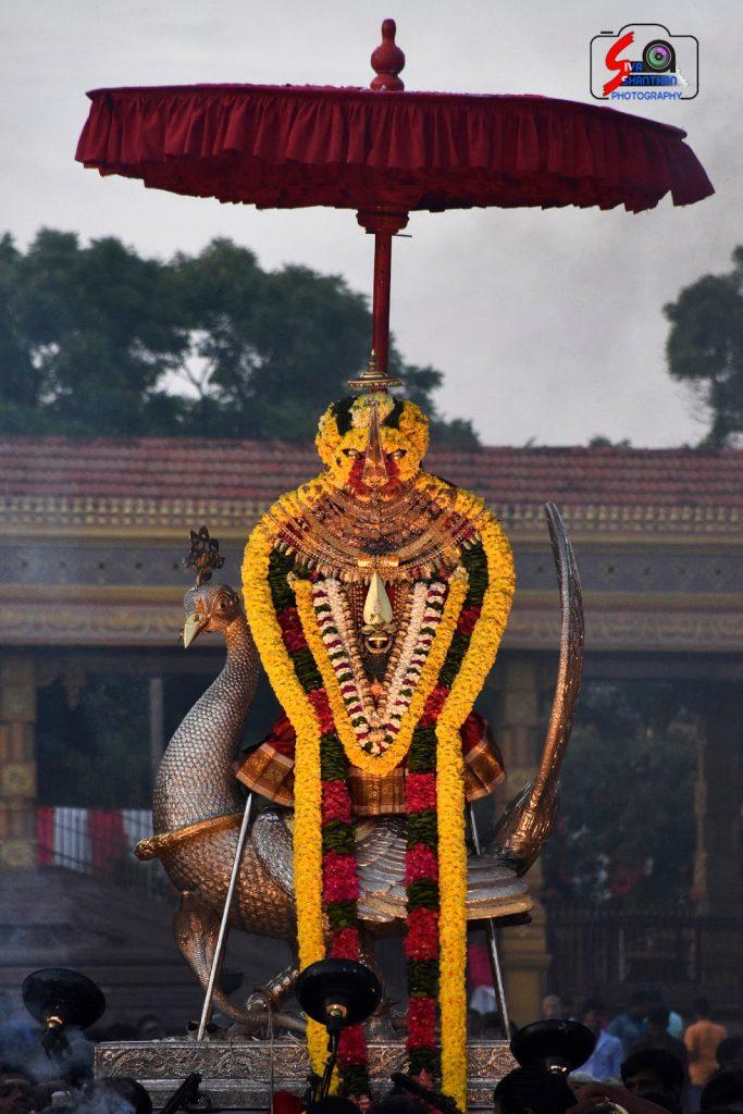 நல்லூர் கந்தசுவாமி ஆலய 19 ம் நாள் உற்சவம் 6