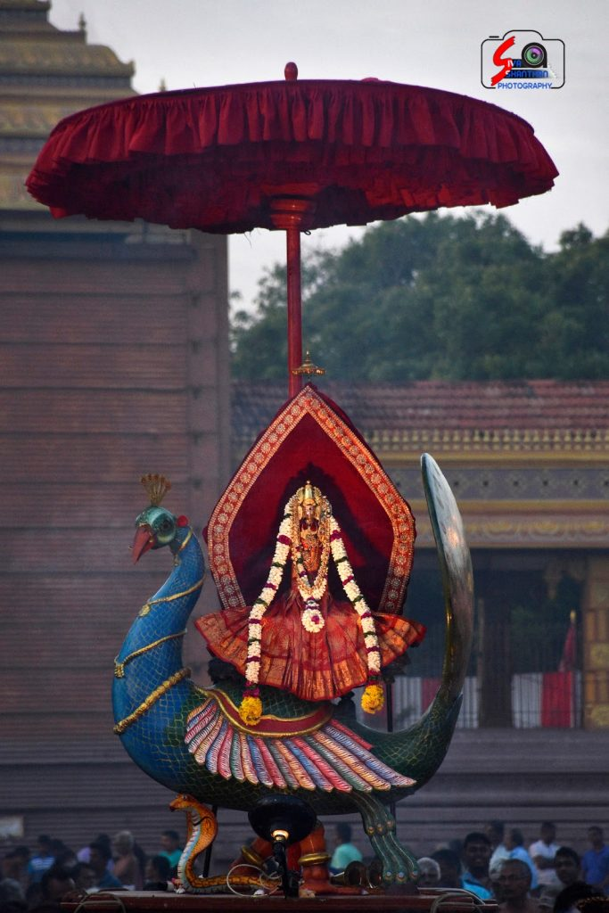நல்லூர் கந்தசுவாமி ஆலய 19 ம் நாள் உற்சவம் 7