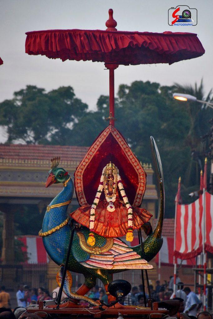 நல்லூர் கந்தசுவாமி ஆலய 19 ம் நாள் உற்சவம் 8