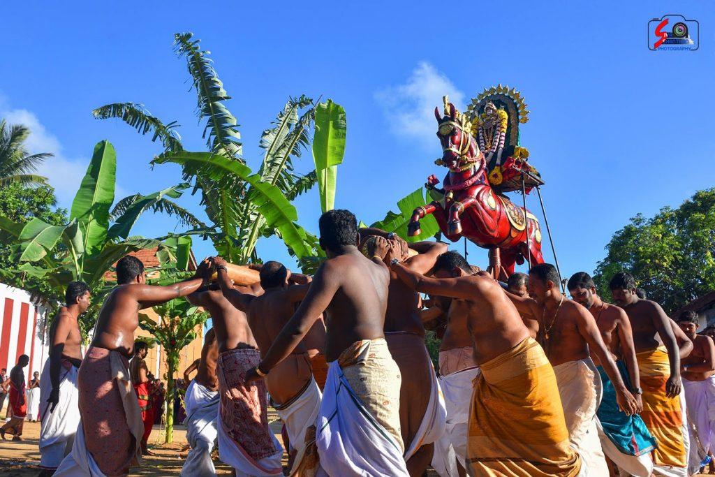 யாழ்ப்பாணம்-நல்லூர் கந்தனின் மானம்பூ உற்சவம் (புகைப்படத் தொகுப்பு) 5