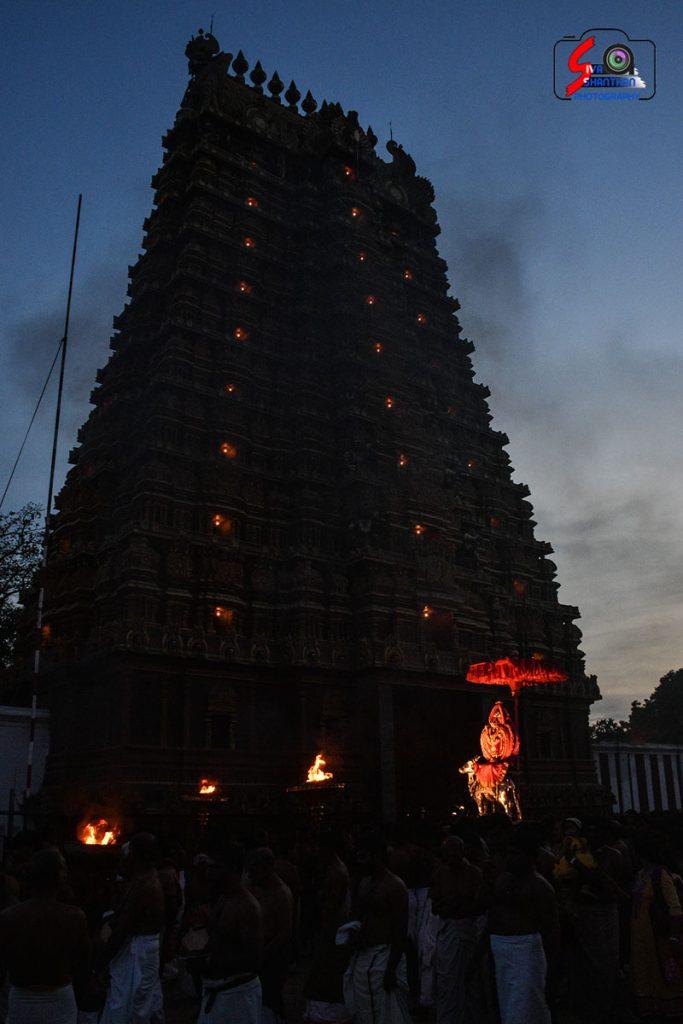 நல்லூர் கந்தசுவாமி கோவில் கந்தசஷ்டி உற்சவம் – 2ம் நாள் 11