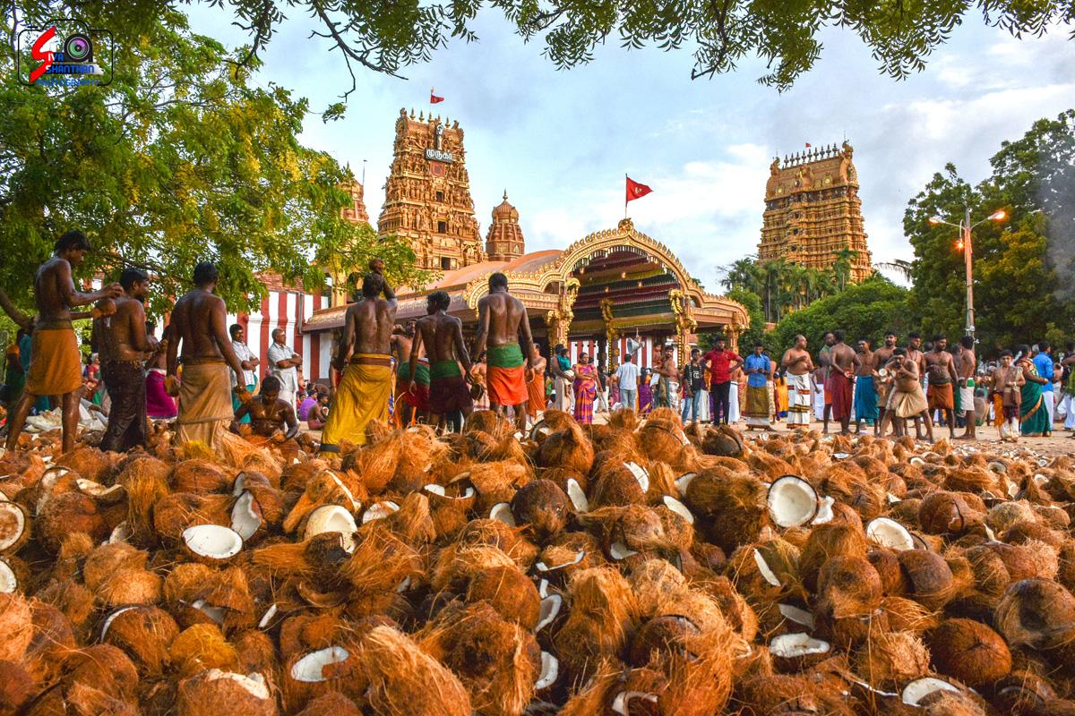 யாழ்ப்பாணம் – நல்லூர் கந்தசுவாமி கோவில் தேர்த்திருவிழா - படங்கள் மற்றும் வீடியோ 2