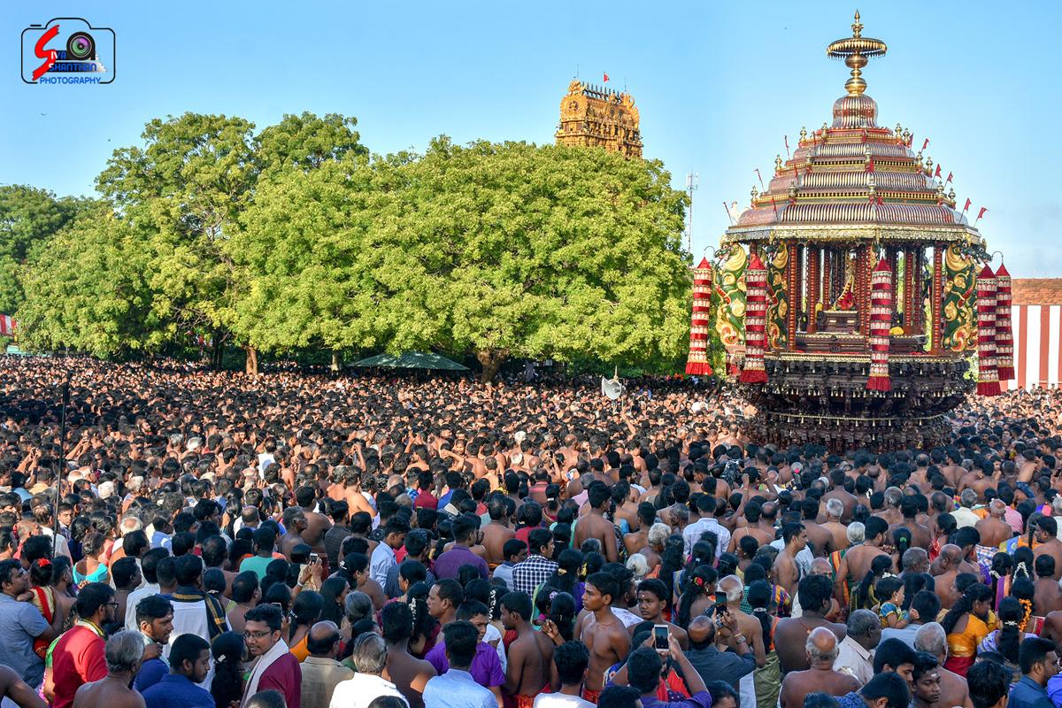 யாழ்ப்பாணம் – நல்லூர் கந்தசுவாமி கோவில் தேர்த்திருவிழா - படங்கள் மற்றும் வீடியோ 8