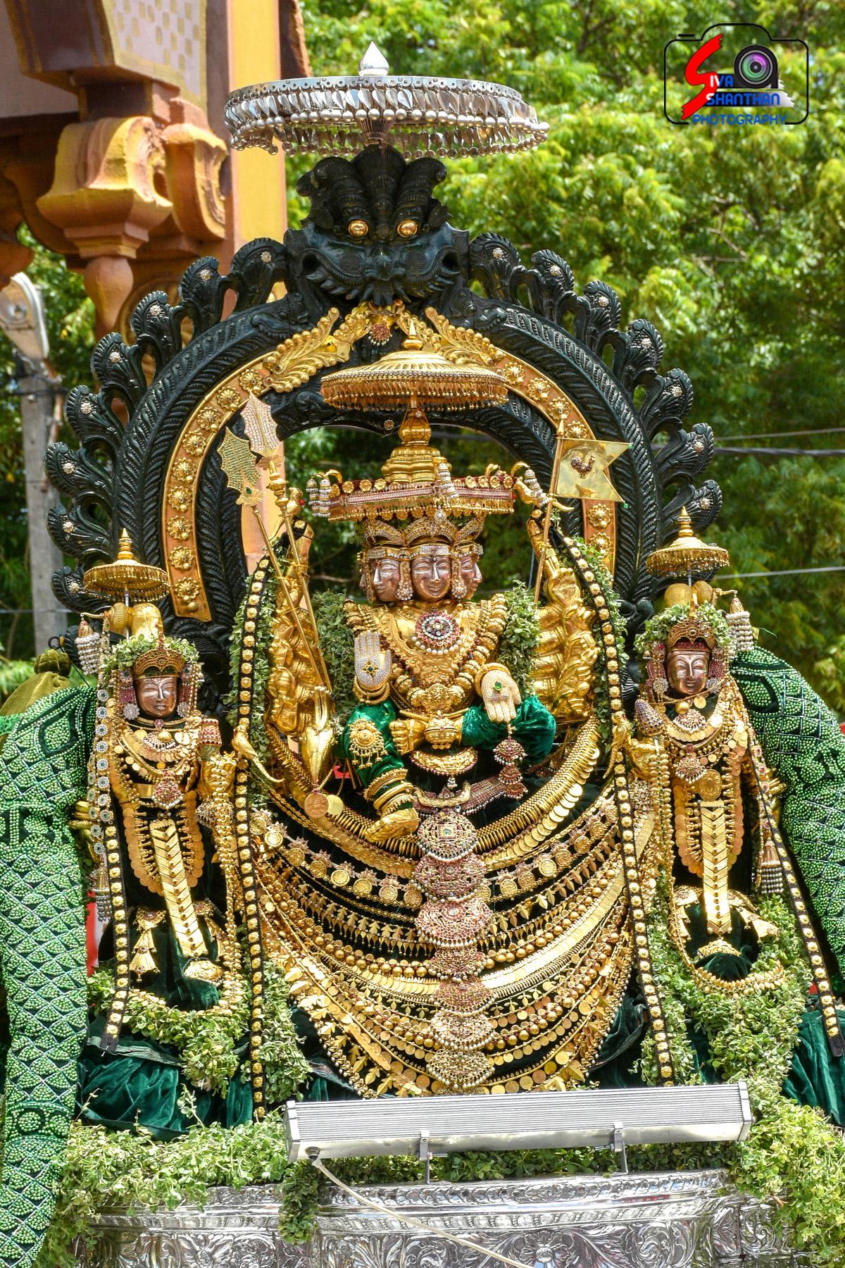 யாழ்ப்பாணம் – நல்லூர் கந்தசுவாமி கோவில் தேர்த்திருவிழா - படங்கள் மற்றும் வீடியோ 20