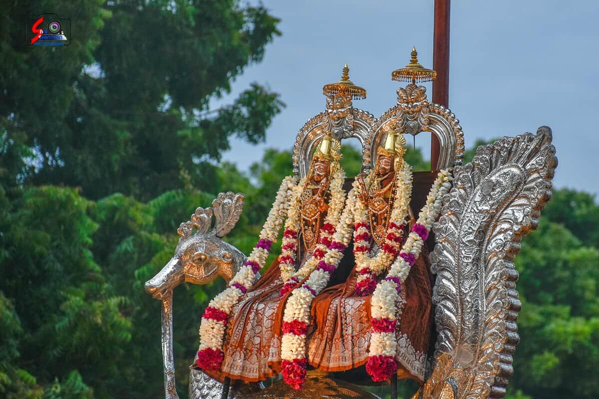 நல்லூர் கந்தசுவாமி கோவில் 3ம் திருவிழா 20