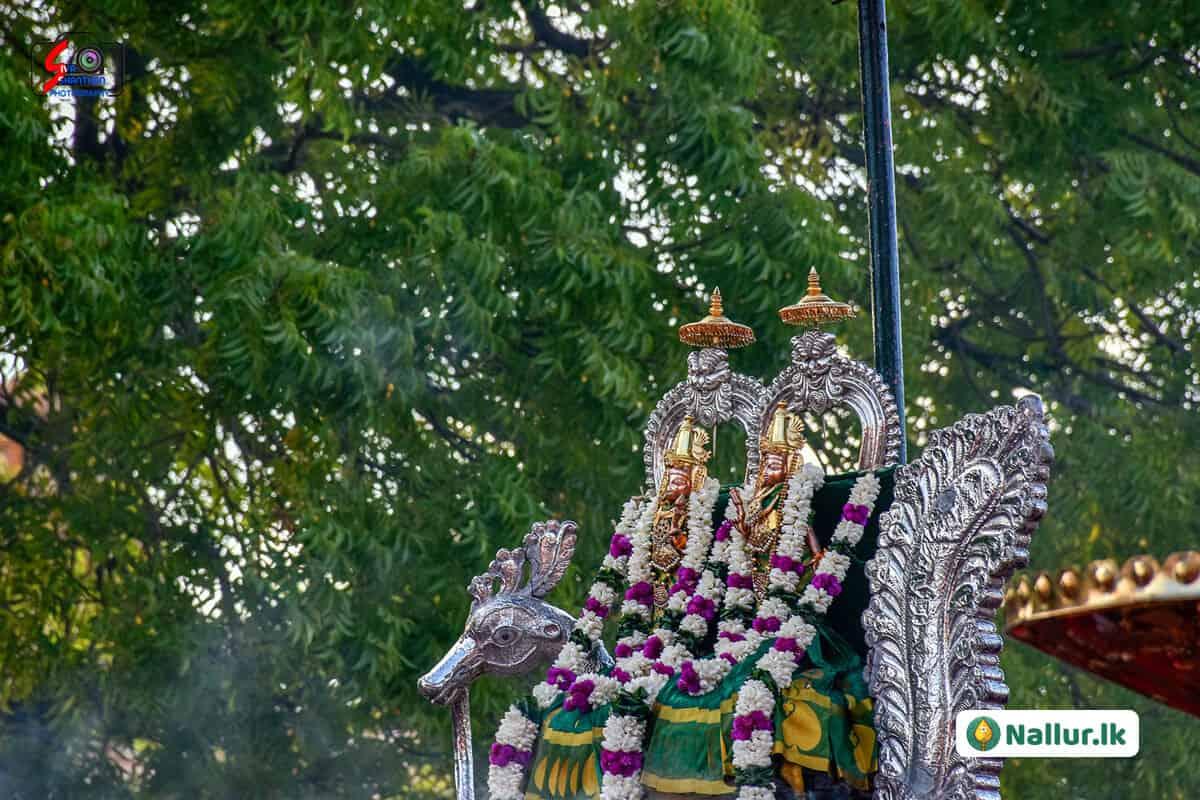 நல்லூர் கந்தசுவாமி கோவில் 1ம் திருவிழா (படங்கள்) 14